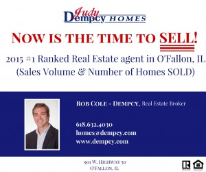 Rob cole - DempcyReal estate broker (2)