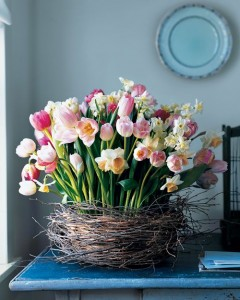 tulip-flower-arrangements-ideas-for-spring-living-room-apartment-23
